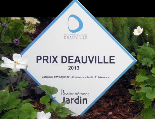 Concours du Jardin éphémère 2013 – Deauville (14)